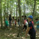 Campi estivi per i bambini terremotati del centro Italia