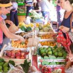 Qbio: la community del biologico di Palermo
