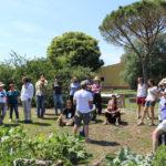 Nasce il Gardeniser, il coordinatore di orti urbani condivisi