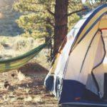"""""""Grinto"""", a Torino il campeggio ecologico che promuove il turismo sostenibile"""
