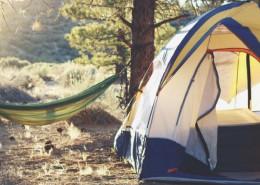 grinto-torino-campeggio-ecologico-promuove-turismo-sostenibile