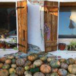 Nasce la scuola di Agricoltura Indigena: un percorso di autoproduzione e riscoperta delle tradizioni