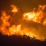 Incendi: a rischio in Africa la seconda foresta pluviale del pianeta