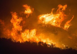 forest-fire-3905864_960_720