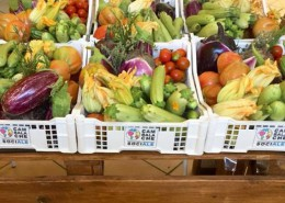 alimentare-watson-cassetta-frutta-verdura-favorire-inclusione-sociale
