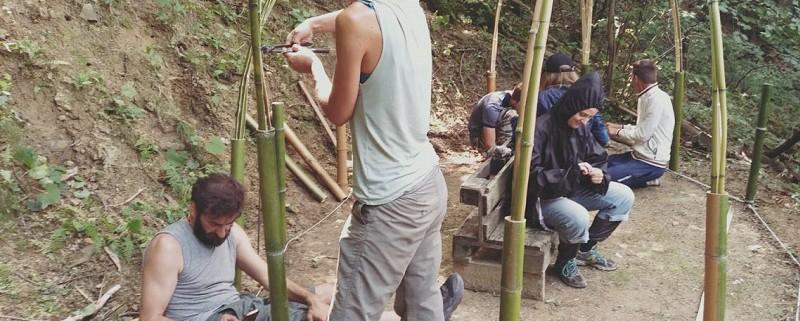 libera università del bosco 3-ant