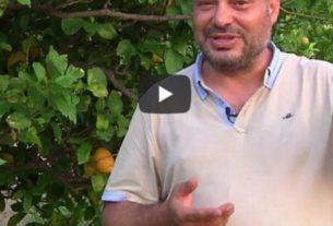 """Nelson Mandela """"sbarca"""" in Calabria: accoglienza e lavoro creano il futuro – Io faccio così #264"""