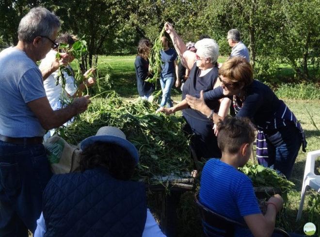 Arvaia e la Food Coop Camilla: cibo e comunità si incontrano… dal Veneto a Bologna