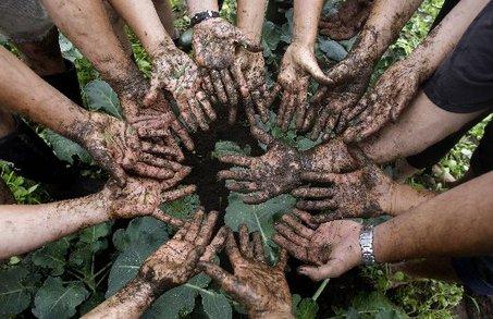 large_organic-farming-2