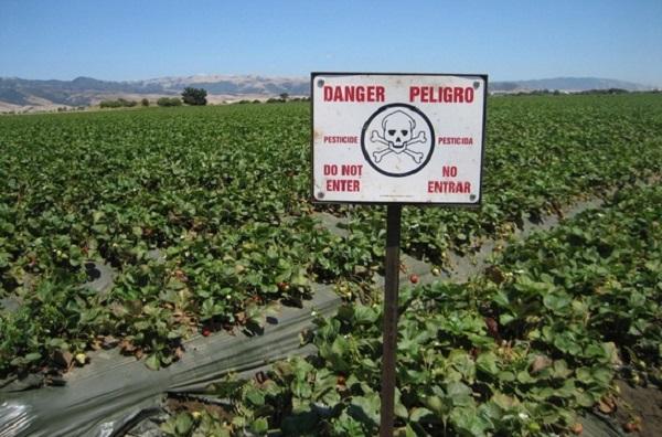Pesticidi12