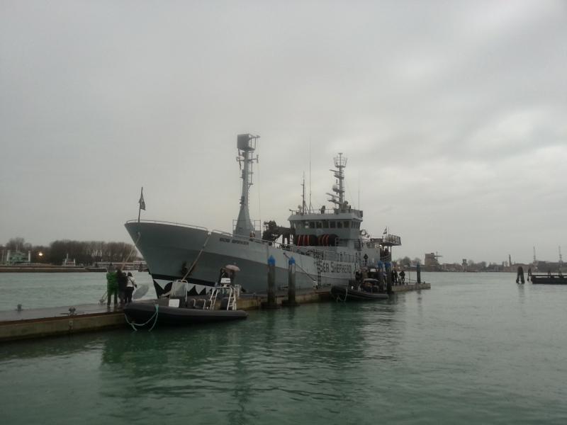 Per la prima volta in Italia, di ritorno dalle Isole Faroe, la Bob Barker di Sea Shepherd ha fatto tappa a Venezia