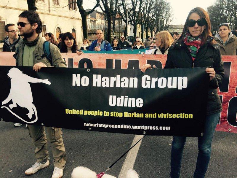 No Harlan Group Udine costituito da attivisti di diverse associazioni e singoli cittadini che lottano contro gli abusi che subiscono gli animali