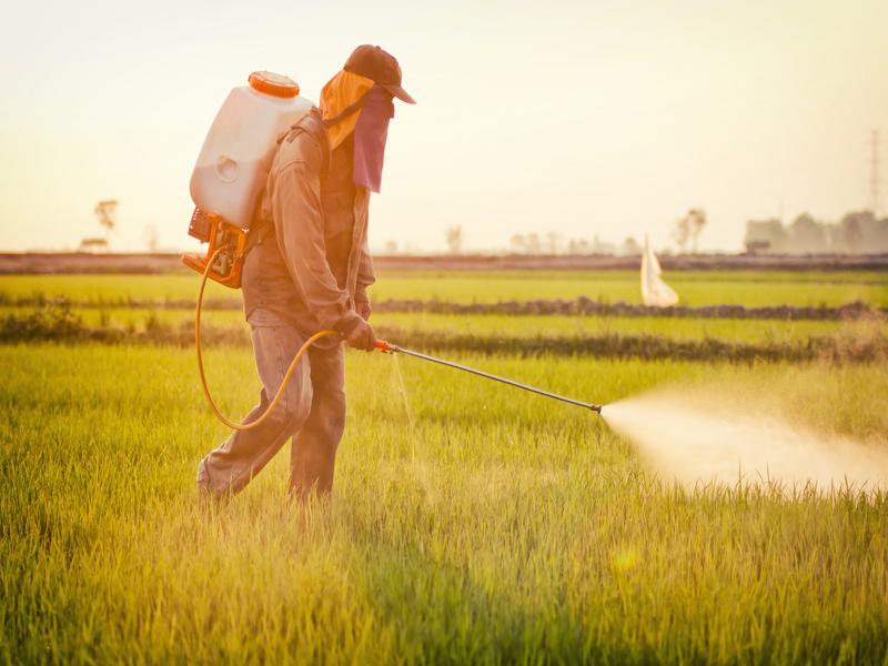 plan le foll pesticides gouvernement agriculture