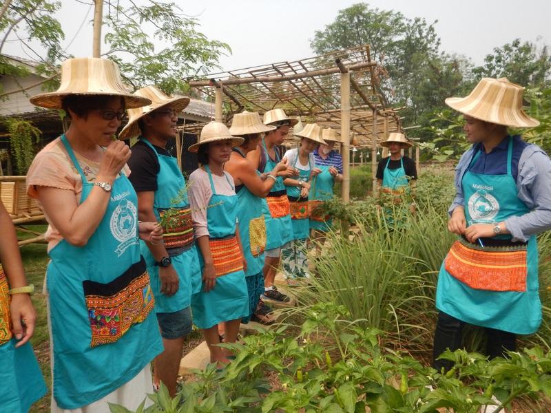 cyclolenti-thailandia