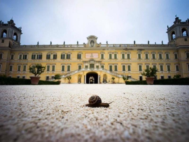 La seconda edizione del Festival della Lentezza si terrà dal 17 al 19 giugno nella splendida cornice della Reggia Ducale di Colorno