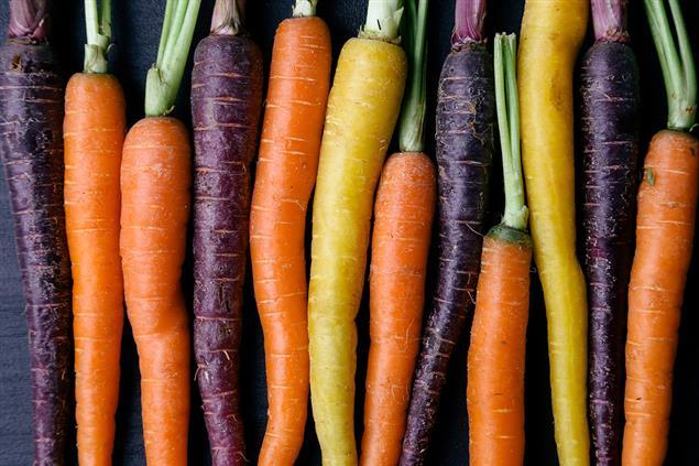 Feeding-Children-a-Vegetarian-Diet