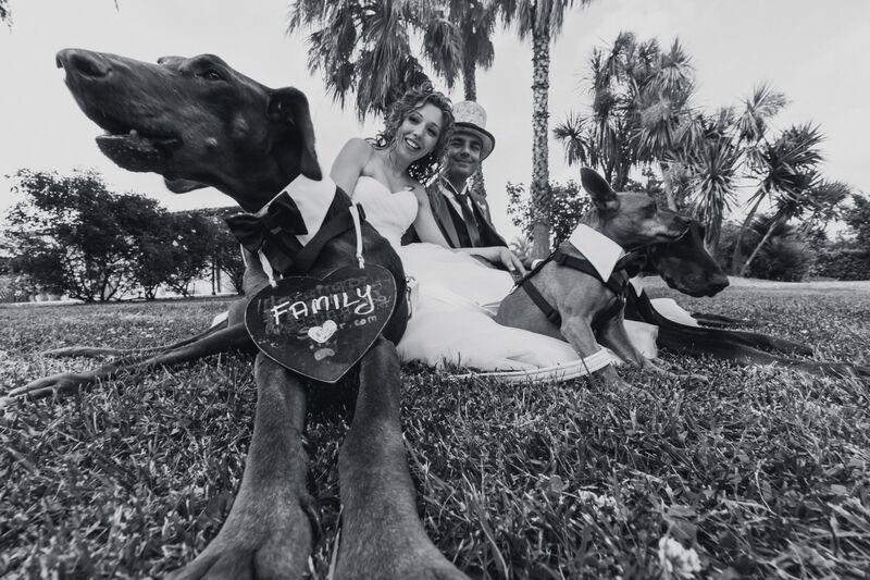 Ilaria e Diego con i loro cani Zagor, Togo e Gino (Foto di www.weddingdogsitter.com(riproduzione riservata)