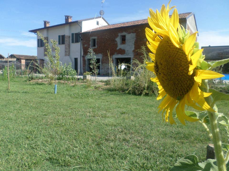 Il bed and breakfast Il Girasole, aperto da Stefania Rossini