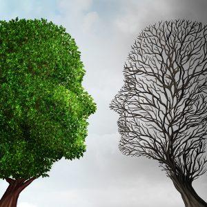 tree-head-people-ecopsychologybigstock-Social-Ecology-100910321-300x300