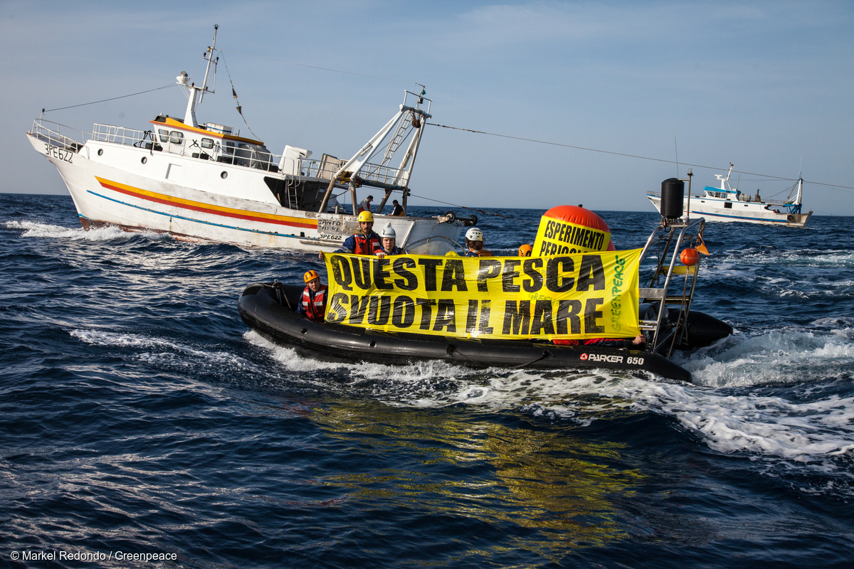 Fisheries Action in Sicily