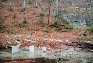 Naturografie, si presenta a Raggiolo il progetto di Roberto Ghezzi