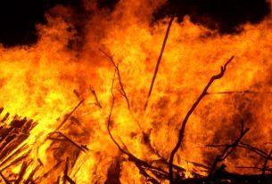 Prevenzione incendi: migranti volontari per pulire boschi e sentieri