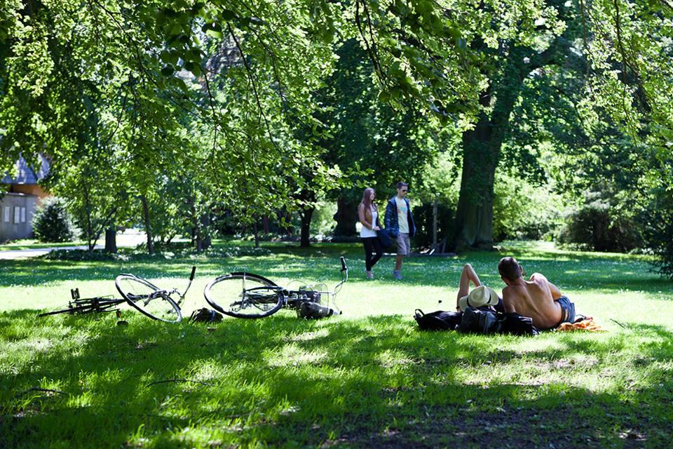 A Copenhagen già da molti anni non vengono più usati i pesticidi nelle aree urbane