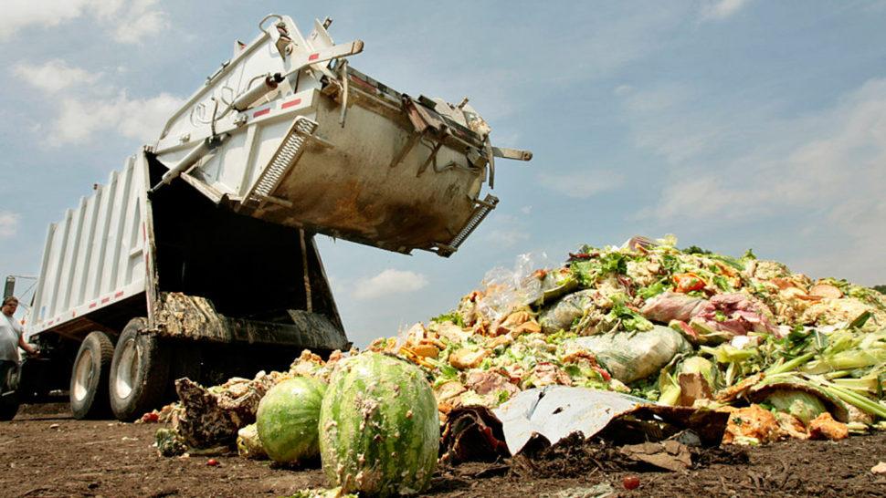 food-waste_opt-970x546