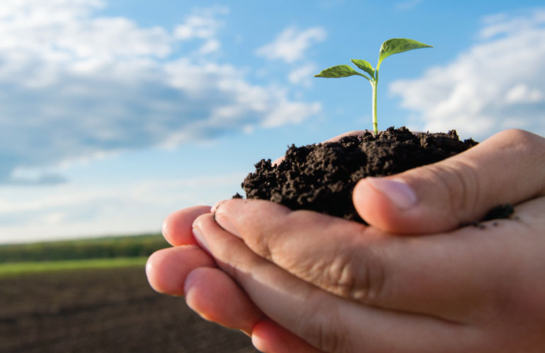 farming-future-good-hands-image