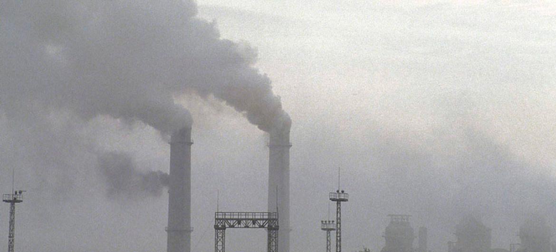 L'inquinamento è uno dei fattori che compromette la capacità dell'organismo di autoregolarsi