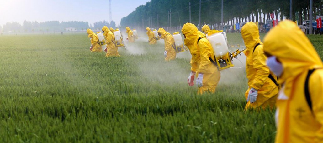 whats-the-big-deal-with-pesticides-x1280