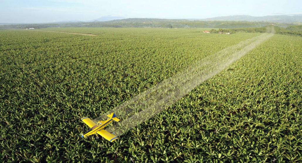 no ai pesticidi 4
