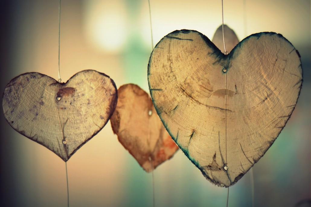 intelligenza-cardiaca