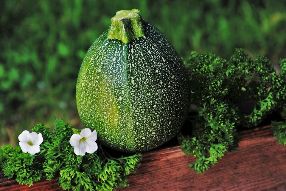 zucchini-3460741_960_720