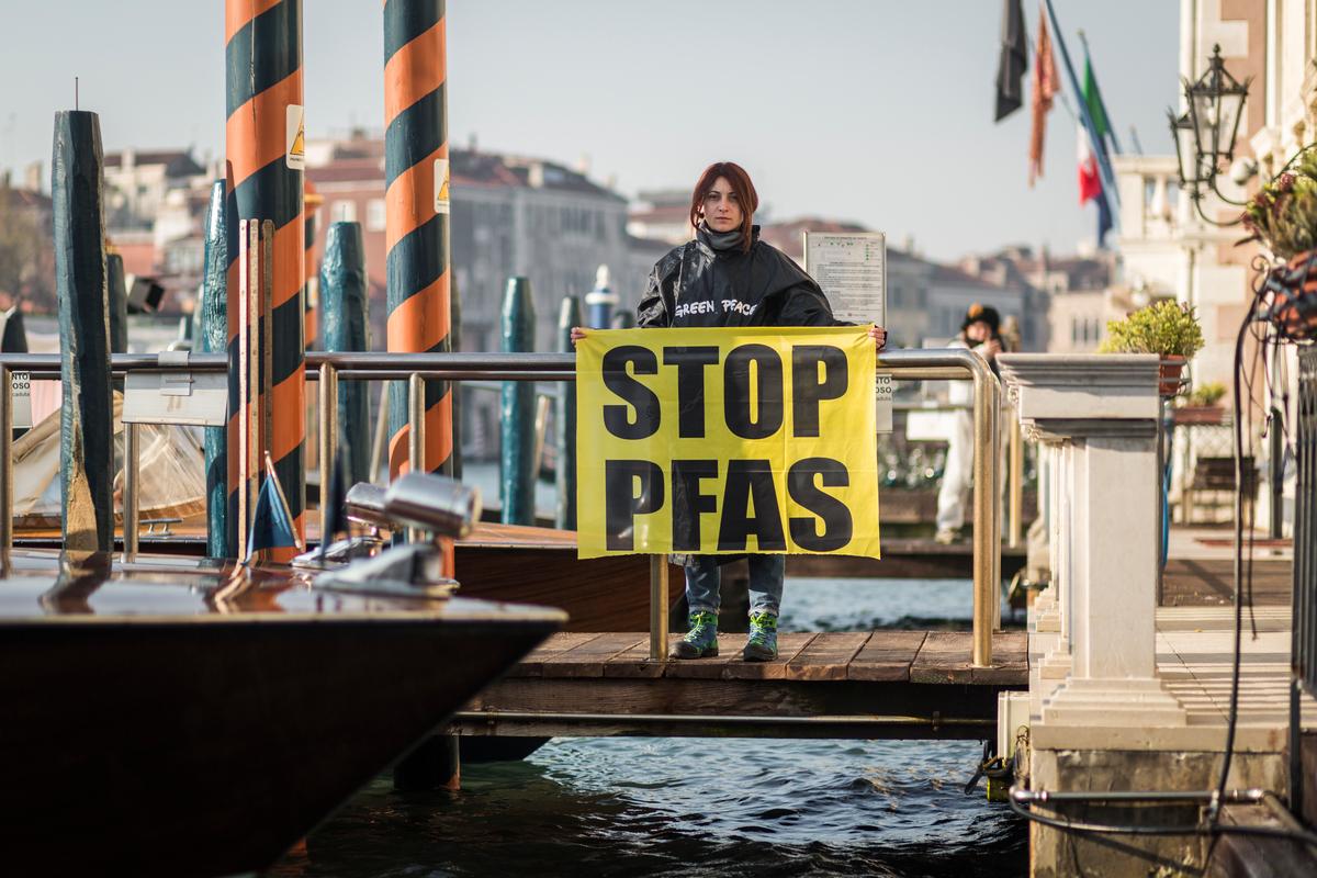 Foto di Francesco Alesi tratta da Greenpeace.org