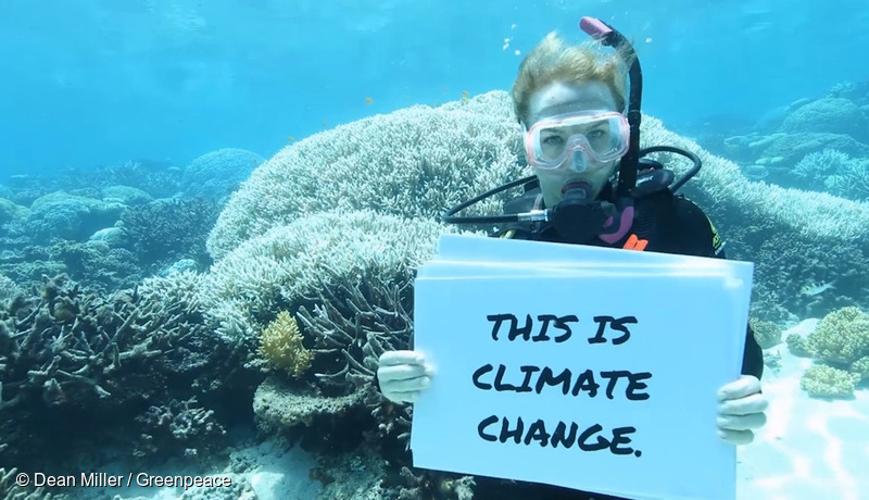 Great Barrier Reef Mass Coral Bleaching Event