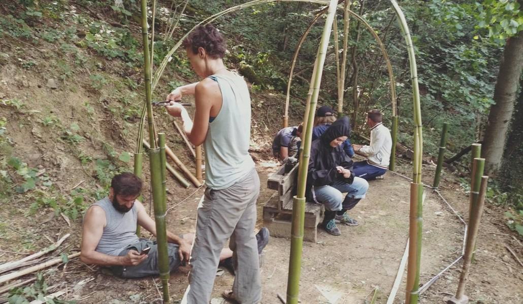 libera università del bosco 3