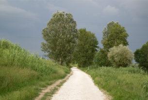 La ciclopista dell'Arno e dell'Archiano