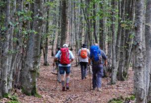 La Compagnia dei Cammini in Casentino: turismo responsabile e lentezza