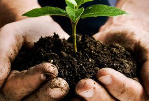 Corso base di agricoltura omeodinamica con Enzo Nastati