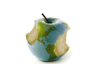 Declinare la globalizzazione: profitti o diritti?