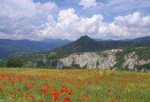 Ecomuseo del Casentino: tutti gli eventi di primavera