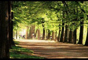 """#36 – """"Il tuo Parco"""", rigenerazione e partecipazione lungo il fiume Po a Torino"""