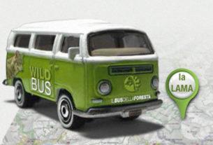 Wild Bus: il bus della foresta