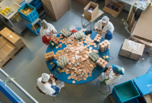 Il Ponte: l'impresa sociale che dà occupazione ai più fragili