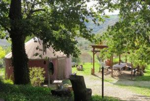Parco Cristallo: cinque amiche gestiscono un centro olistico immerso nella natura