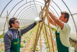 AgriArchè: giovani in campo per coltivare riscatto