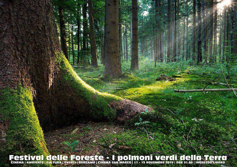 festival delle foreste