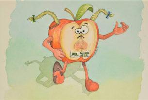 Mel, la mezza mela