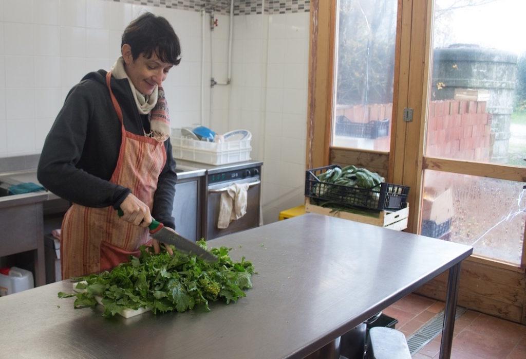 Il Rosmarino vita in campagna food